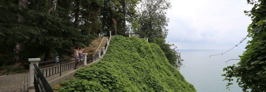Ботанический сад|Аджария|Батуми|Самое интересное Грузия