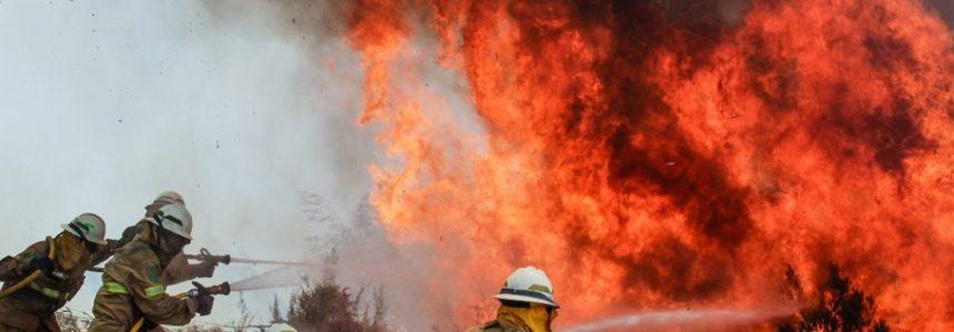 В Кахети пожар, начавшийся из-за поджога травы фермерами, ликвидировали!